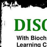Biochar flyers